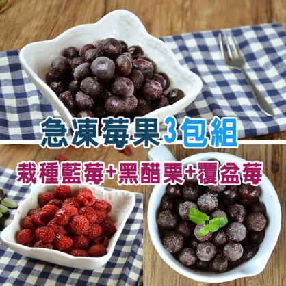 进口急冻莓果-3包组(栽種蓝莓1公斤+黑醋栗1公斤+覆盆莓1公斤)