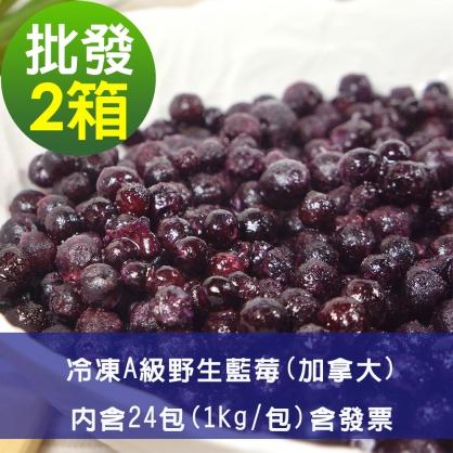 【幸美莓果】批發 A級冷凍野生藍莓24公斤