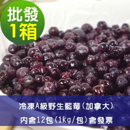 【幸美莓果】批發 A級冷凍野生藍莓12公斤