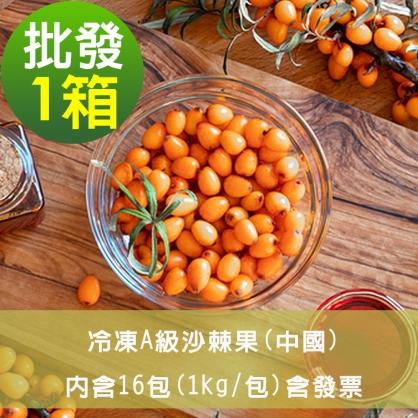 【幸美莓果】批發 A級冷凍沙棘果16公斤