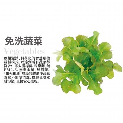 蔬菜驚喜包(34入組)