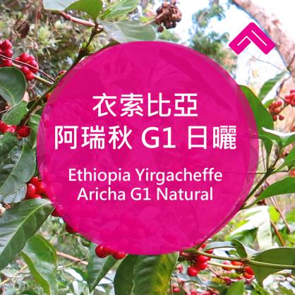 衣索比亞 阿瑞秋 G1 日曬