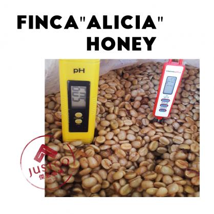 生豆] 宏都拉斯 艾莉西亞莊園 厭氧蜜處理