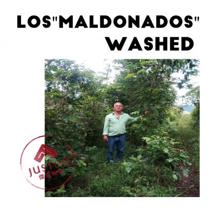 [生豆] 宏都拉斯 瑪多那多莊園 水洗
