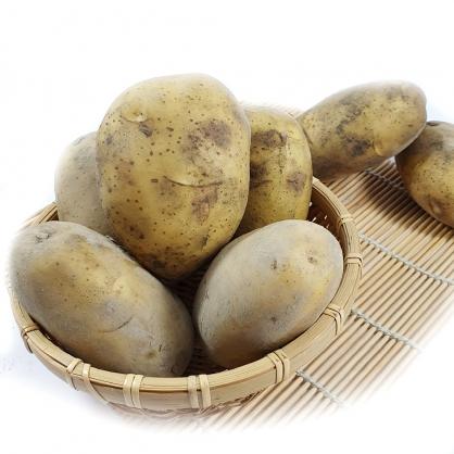 【纖沺大山元農場】馬鈴薯 3斤 / 5斤