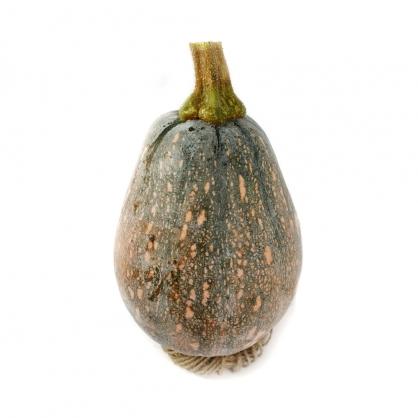【纖沺大山元農場】木瓜型南瓜 5斤/10斤