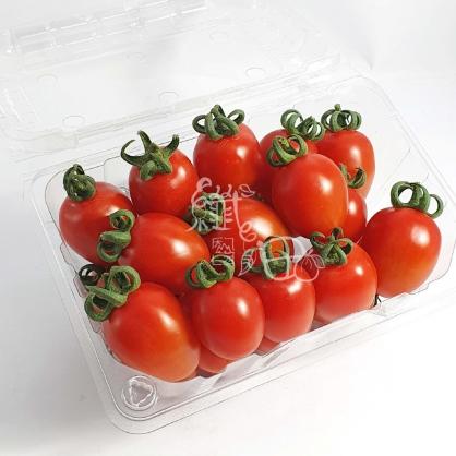 高雄小番茄  1箱3斤